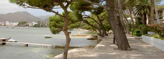 Puerto Pollensa Pine Walk