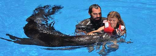 Oasis Park Sea Lion Show